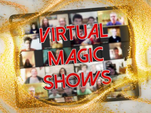 The Virtual Show